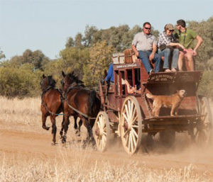 Cobb & Co Stagecoach Tour