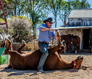 Outback Stockman's Dinner & Show